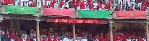 Viva San Fermin 2017
